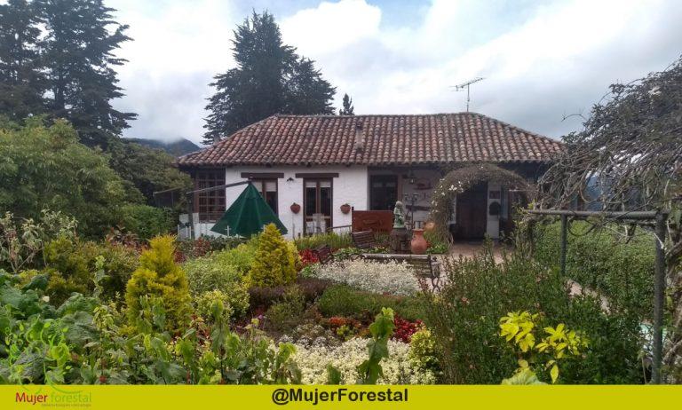 Cerro de Monserrate – Bogotá D.C