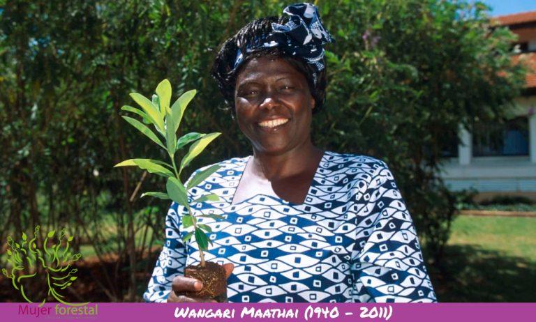 Wangari Maathai (1940 – 2011) – Política y Activista Ecológica