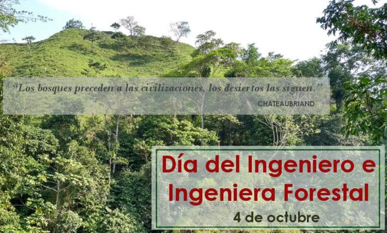 4 de Octubre – Día del Ingeniero e Ingeniera Forestal en Colombia