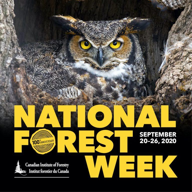 Semana Nacional de los Bosques en Canadá